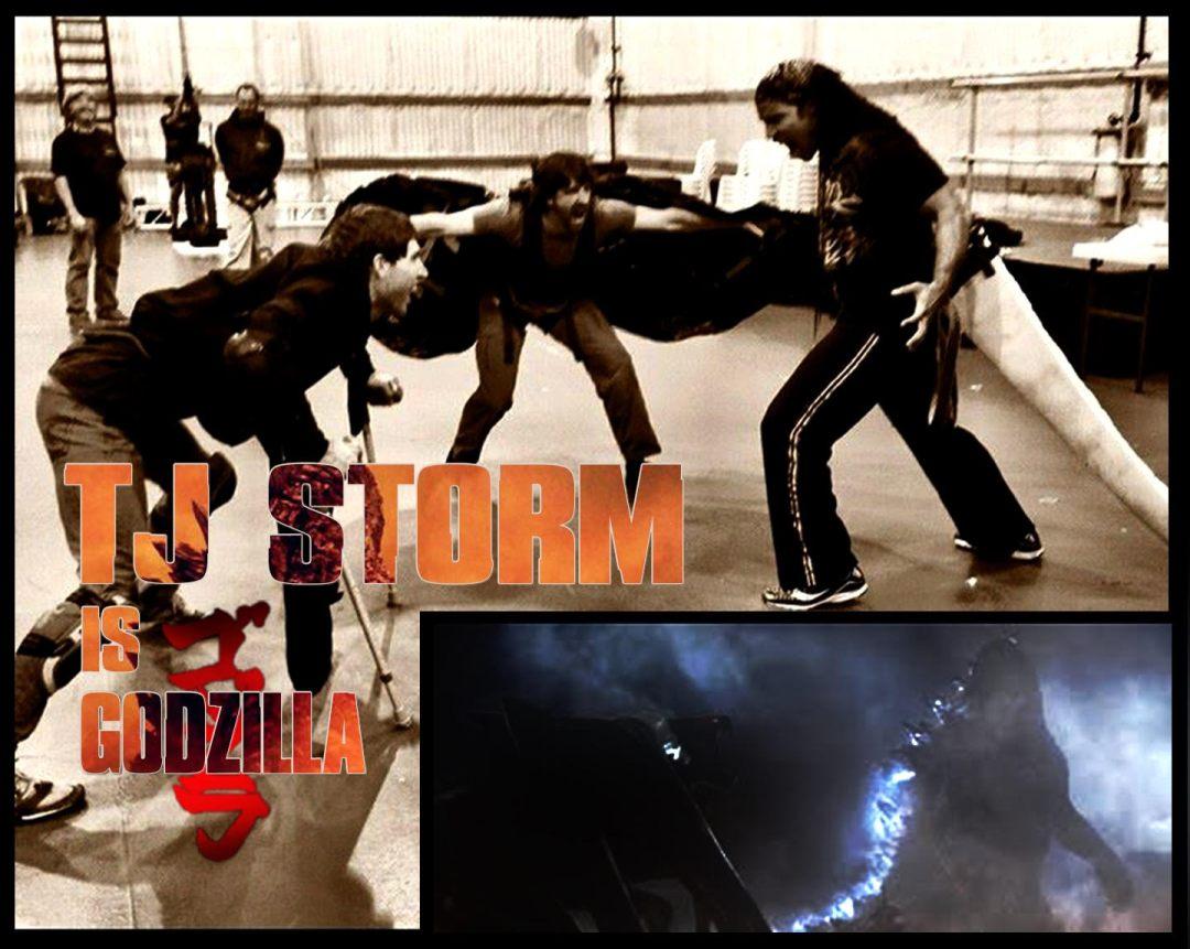 TJ Storm2